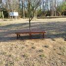 原っぱにウッドベンチを設置しました♪